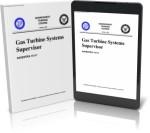 14111 Gas Turbine Systems Supervisor